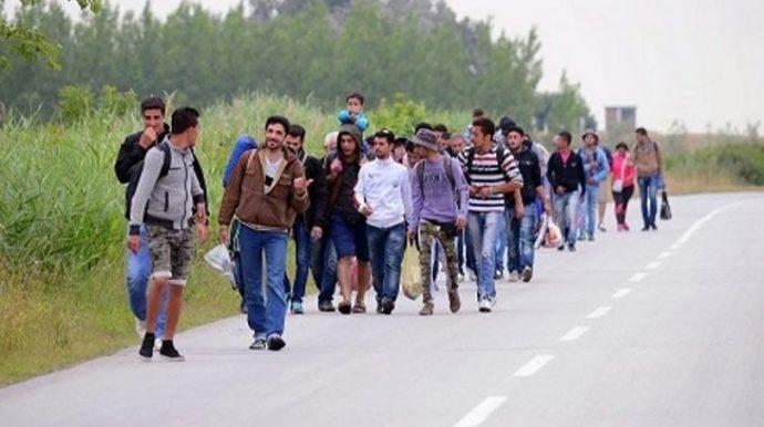 GACKO: Spriječeno krijumčarenje četvero Sirijaca