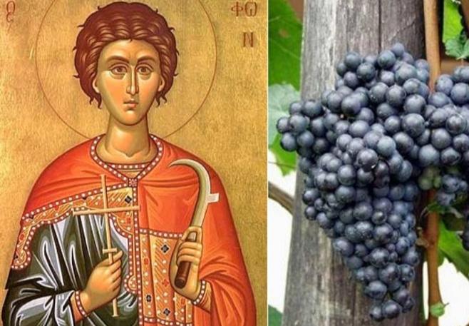 Sveti Trifun slava vinogradara