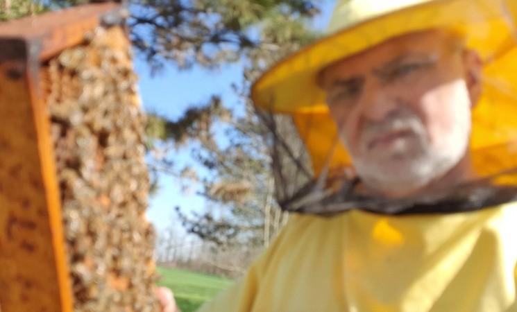 Malešević: Pčelarima omogućiti odlazak do pčelinjaka i kupovinu šećera