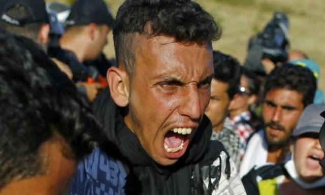 HAOS U BEOGRADU! Migranti noževima napali dva muškarca i ženu! - Istok