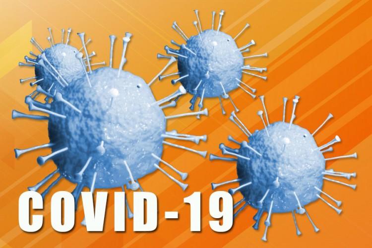 U FBiH 102 nova slučaja virusa korona