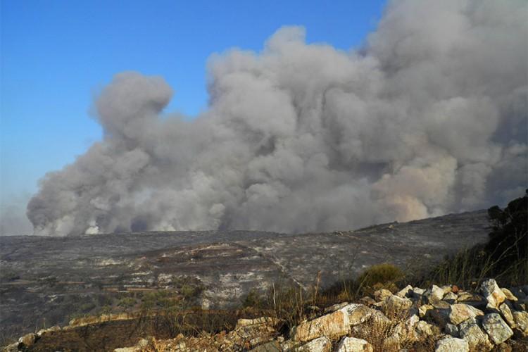 Više od 50 požara u Grčkoj za posljednja 24 časa