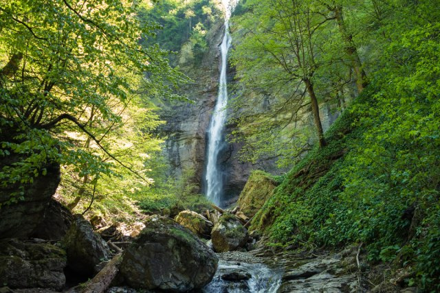 Bosna i Hercegovina ima čak 12 prašuma